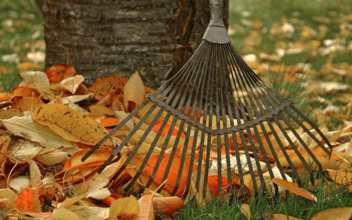 Jesenné práce a upratovanie v záhrade